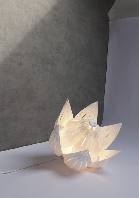 De tortouise lamp